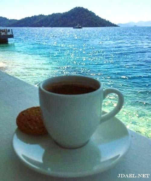 بداية صباح جميل ونسمات البحر ورشفة قهوة